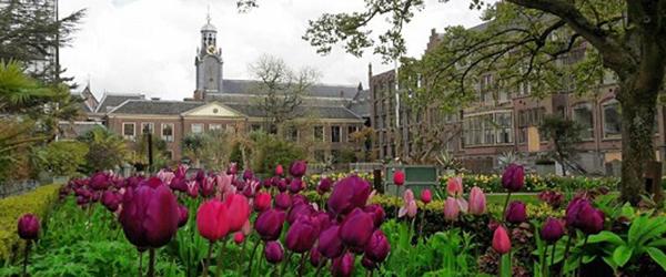 Hortus Botanicus Leiden University